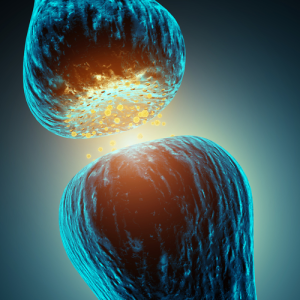 Дофамин как нейромедиатор