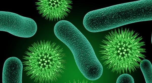 Орнидазол помогает в борьбе с различными вредоносными микроорганизмами