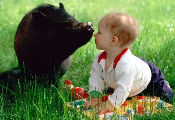 Маленькие дети находятся в группе риска. Поэтому к ним всегда нужен особый контроль