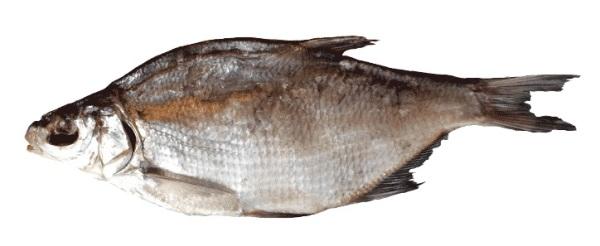 Плохо провяленная рыба несет в себе паразитов
