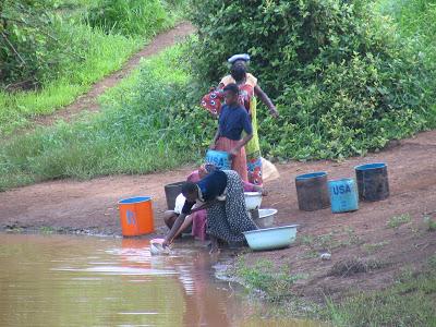 Ареал распространения дракункулеза - Африканские страны