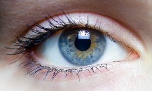 Глаза паразиты выбирают, т.к. там много питательных для них веществ