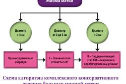 Алгоритм консервативного лечения миомы матки