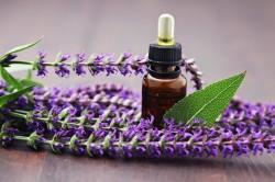 Полезные свойства эфирного масла шалфея