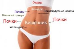 Проблемы с органами в зависимости от положения боли