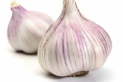Употребление чеснока - причина неприятного запаха