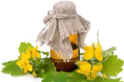 Применение отвара чистотела для лечения полипов в матке