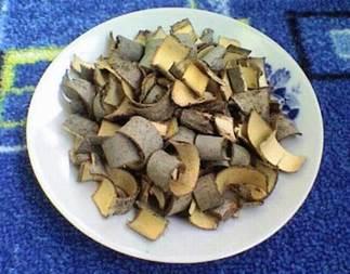 Кора осины имеет широкое применение, в том числе и как антигельминтик