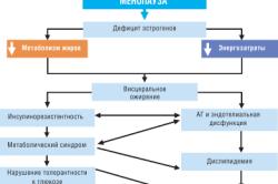 Метаболические изменения в менопаузе