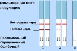 Оценка теста на овуляцию