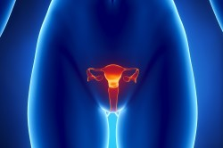 Воспаление репродуктивных органов - показание к гирудотерапии